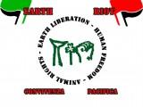 logo con bandiere sfondo bianco