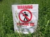 rapporto legambiente pesticidi nel piatto