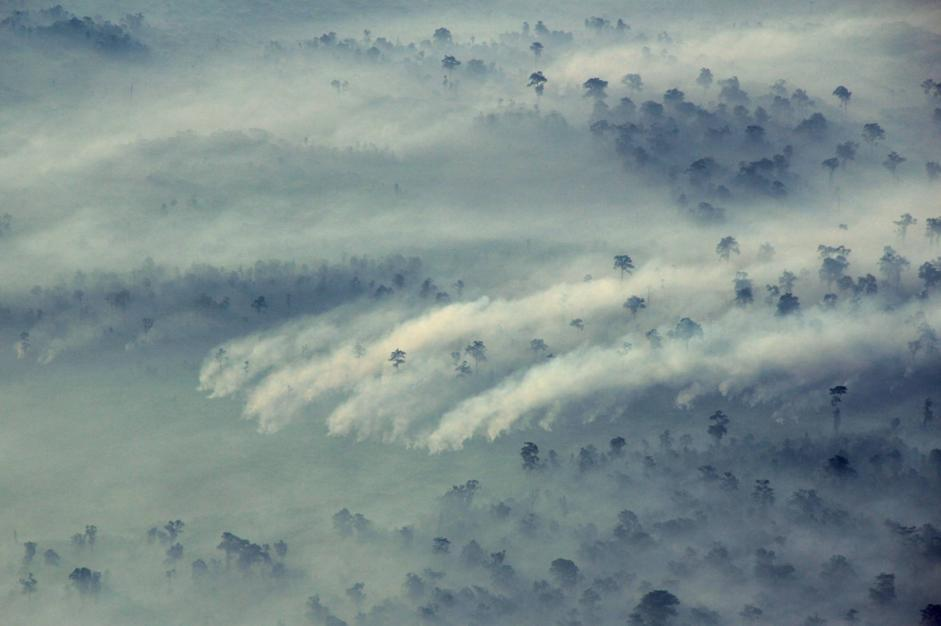 Le foreste di Sumatra in fiamme.