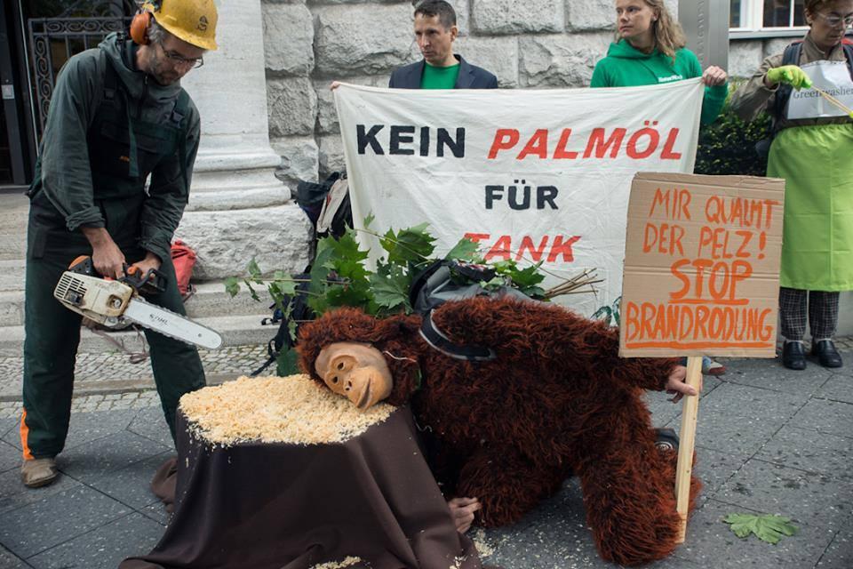 Berlino, 3 settembre 2013 - foto di: Salva la Selva