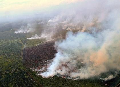 Sumatra, estate 2013, gli incendi appiccati da Wilmar e Sime Darby.