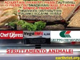 immagine panino chef express