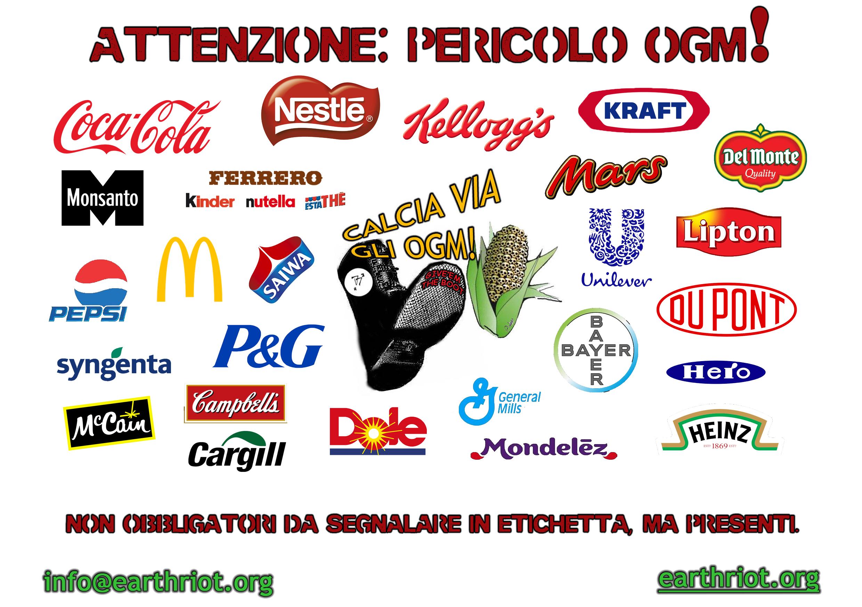 """Volantino disponibile alla sezione """"materiale"""" sul sito www.earthriot.org"""