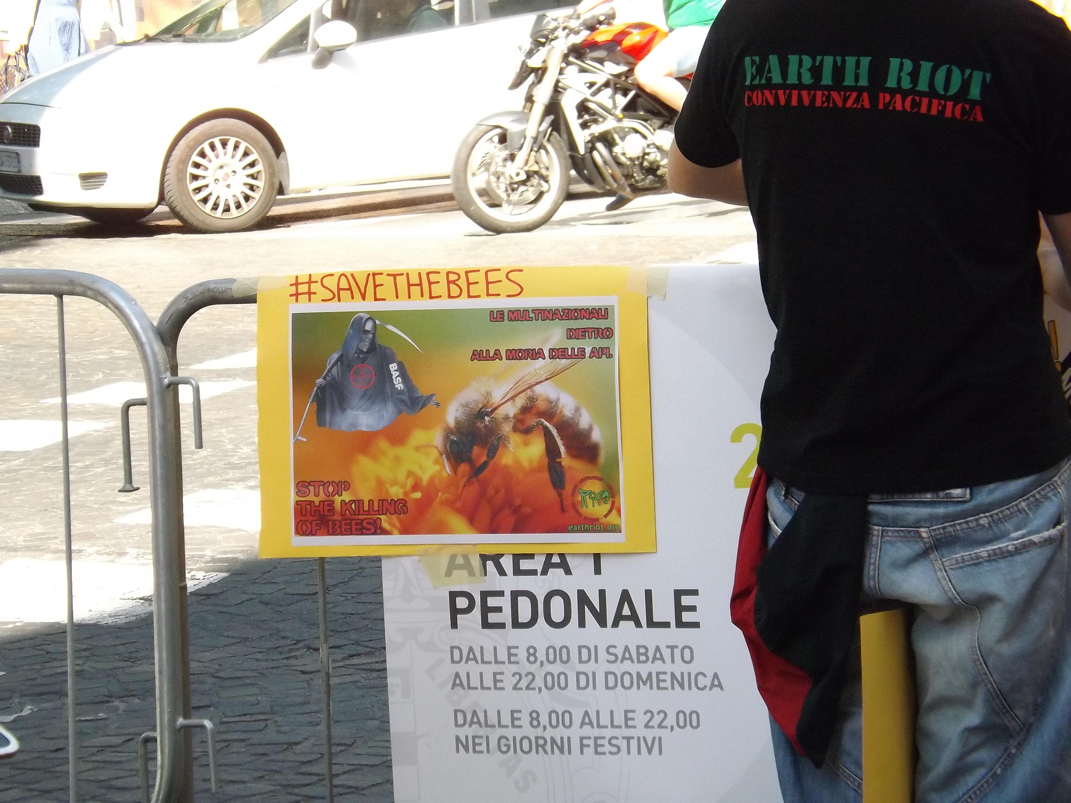 Bologna, #SaveTheBees: senza le api la biodiversità vegetale e animale si estinguerebbe.
