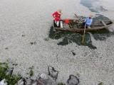 Lago Cajititlan in Messico (foto: Internazionale)
