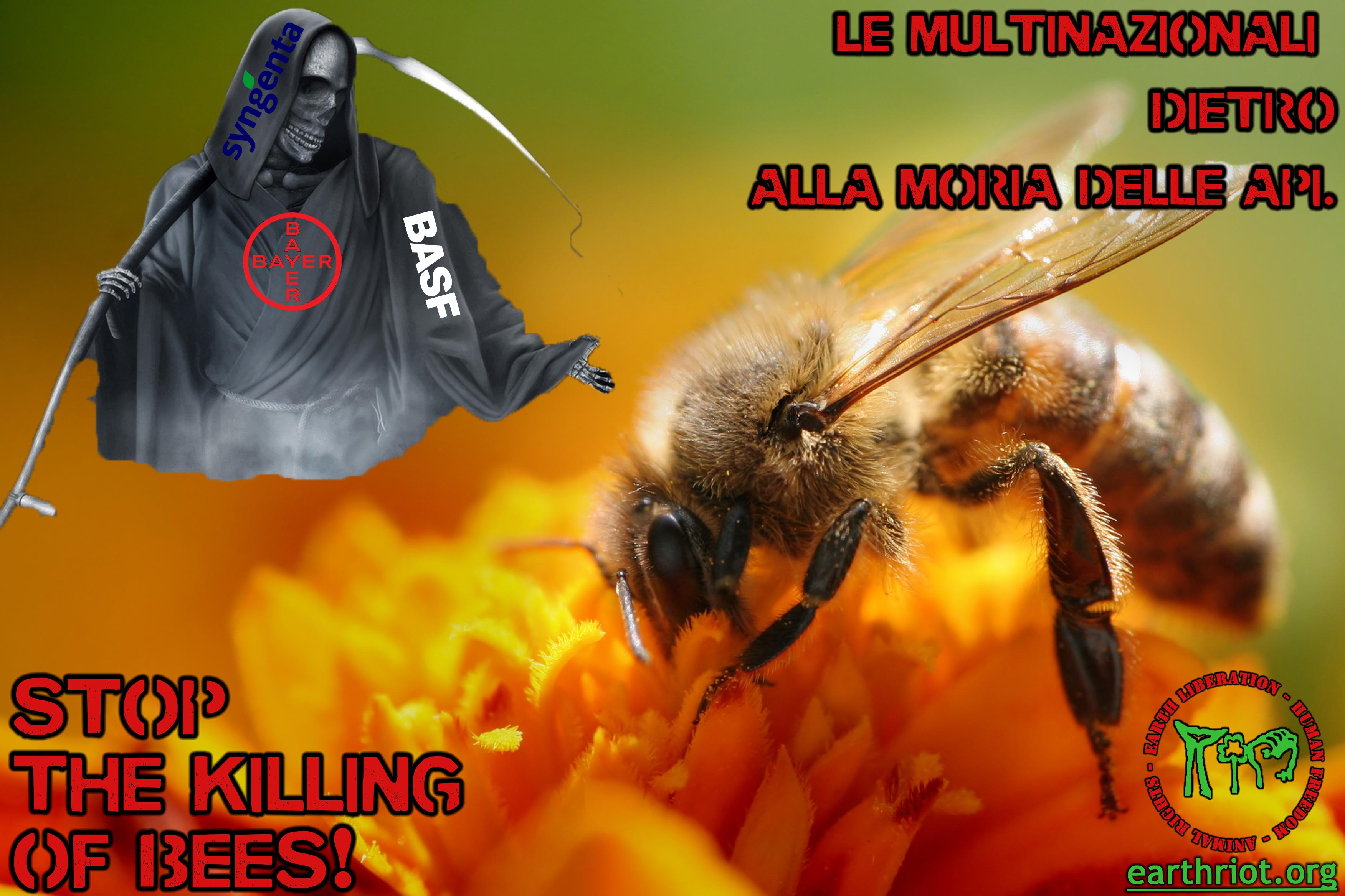 ape morte multinazionali