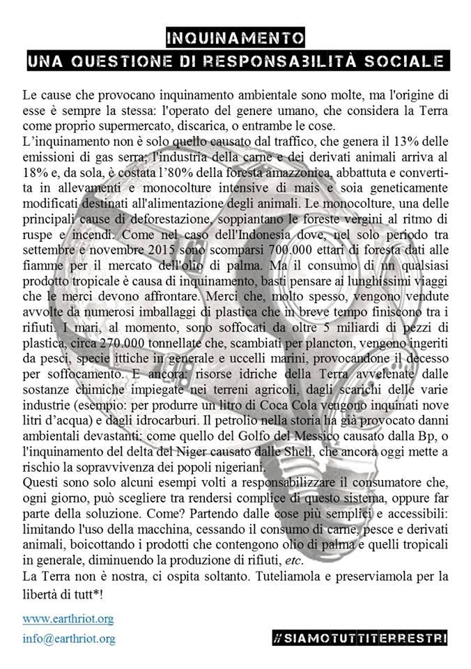 """Volantino disponibile alla sezione """"materiale"""" sul sito di Earth Riot."""