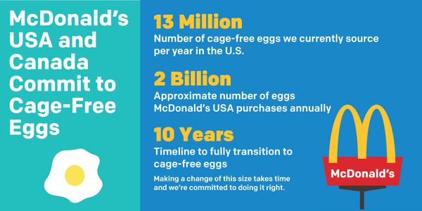 """McDonald's usa la sua opera di sfruttamento come un vanto, dichiarando che utilizza 13 milioni di uova all'anno libere da gabbie; Ogni anno, solo negli Stati Uniti, acquista circa due miliardi di uova; Occorreranno dieci anni per realizzare il piano """"cage-free egg""""."""