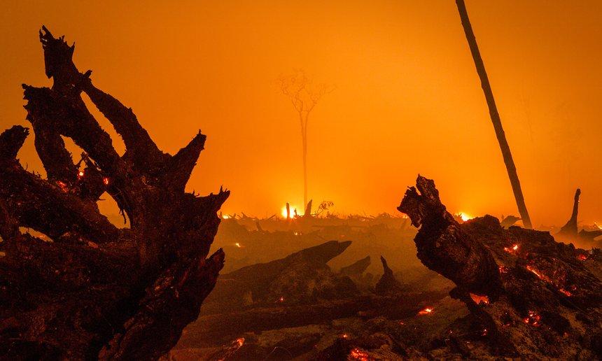 incendi indonesia genocidio