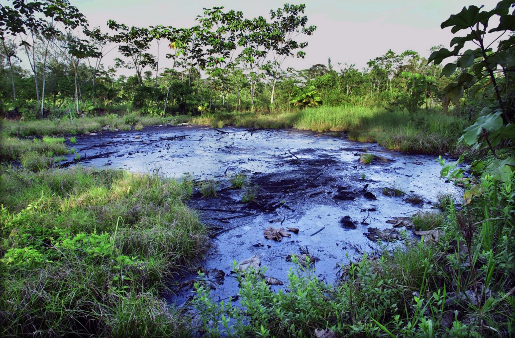 A waste pit filled with crude oil left by Texaco drilling operations years earlier lies in a jungle clearing near the Amazonian town of Sacha, Ecuador, October 21, 2003, on the day of the start of a landmark trial where Ecuadoran rainforest residents are seeking to force Chevron (formerly Texaco) to clean up the environmental contamination left behind from Texaco's operations.