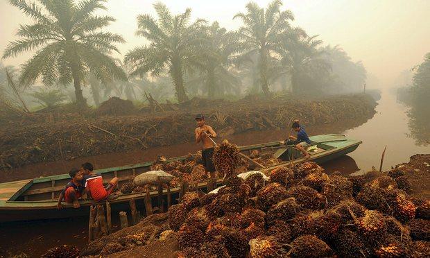 indonesia lavoro minorile