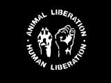 animal-liberation-human-liberation