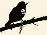 catena-anarchia