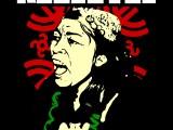 presidio x i mapuche