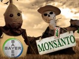 bayer-monsanto-660x250