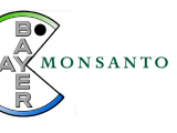Bayer-Monsanto-fusion-copia
